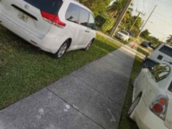 Order Lawn Care in Fort Lauderdale, FL, 33315