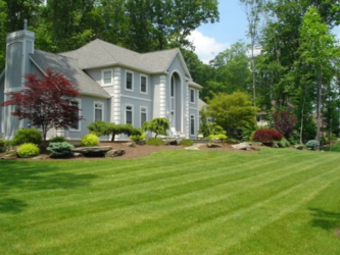 Order Lawn Care in Indianapolis, IN, 46238