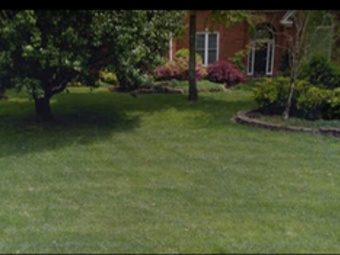 Order Lawn Care in Soddy Daisy, TN, 37379