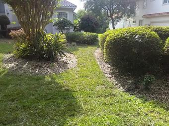 Order Lawn Care in Montverde, FL, 34756