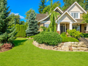 Order Lawn Care in Holley, NY, 14470