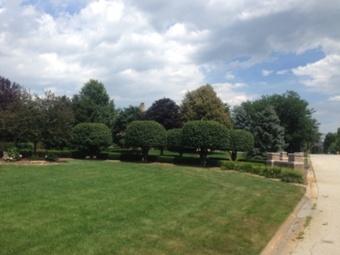 Order Lawn Care in Gardner, IL, 60424