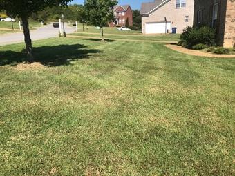Order Lawn Care in Nashville, TN, 37207