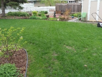 Order Lawn Care in Grand Forks, ND, 58201