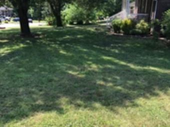 Order Lawn Care in Dallas, NC, 28658