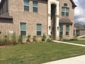 Order Lawn Care in Arlington, TX, 76001