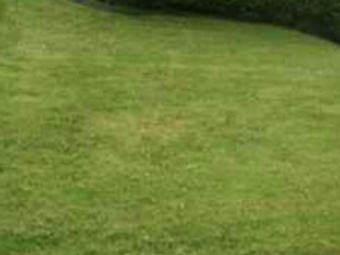 Order Lawn Care in New Kensington, PA, 15068