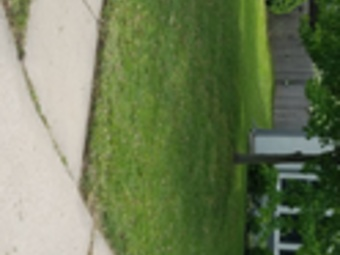 Order Lawn Care in Kansas City, MO, 64111