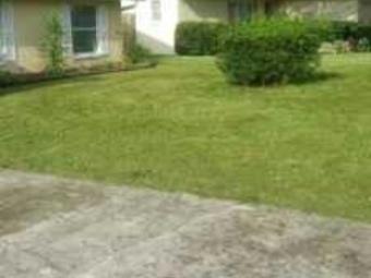 Order Lawn Care in Tampa, FL, 33625