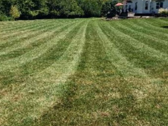 Order Lawn Care in Pataskala, OH, 43073
