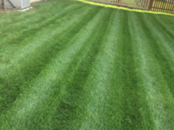 Order Lawn Care in Cleveland, OH, 44028