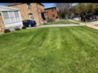Order Lawn Care in Brooklyn Park, MD, 21075