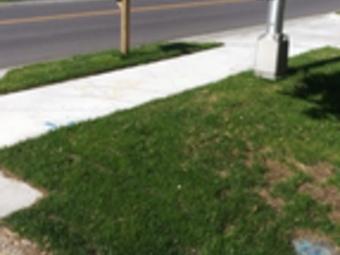 Order Lawn Care in Kansas City, KS, 66104