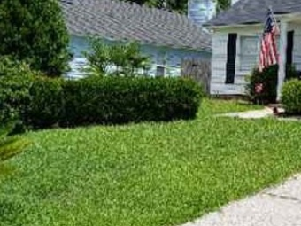 Order Lawn Care in Mt Pleasant , OH, 43081