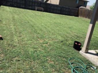 Order Lawn Care in Manor, TX, 78653