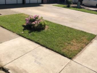 Order Lawn Care in Modesto, CA, 95351