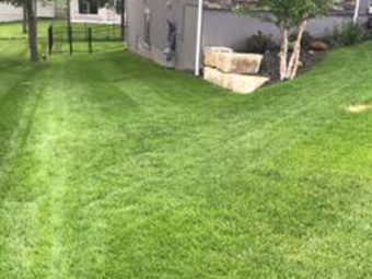 Order Lawn Care in Basehor, KS, 66007