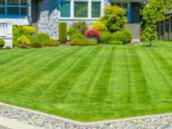 Order Lawn Care in Columbus, OH, 43206