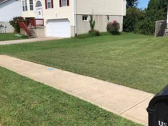 Order Lawn Care in O'fallon, IL, 62269