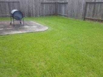 Order Lawn Care in Rosharon, TX, 77583