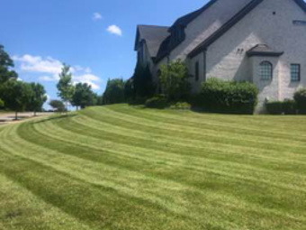 Order Lawn Care in Nashville, TN, 37115