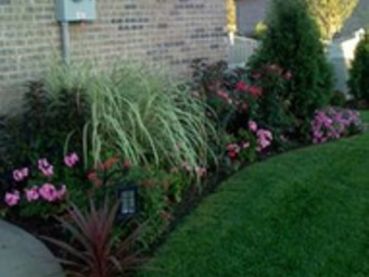 Order Lawn Care in Indianapolis, IN, 46236
