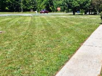 Order Lawn Care in Charlotte, NC, 28269