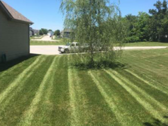 Order Lawn Care in Benld, IL, 62002