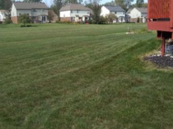 Order Lawn Care in Willis, MI, 48191