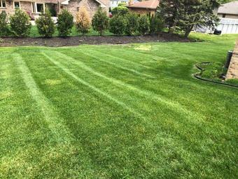 Order Lawn Care in Crest Hill, IL, 60403