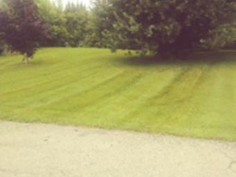 Order Lawn Care in Omaha, NE, 68154