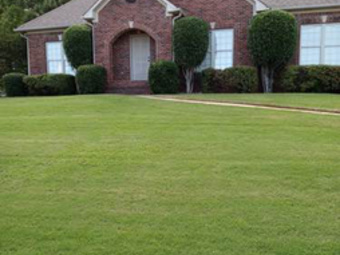 Order Lawn Care in Morris, AL, 35116