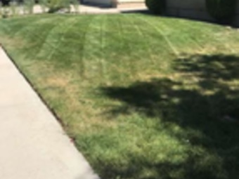 Order Lawn Care in Boise, ID, 83709