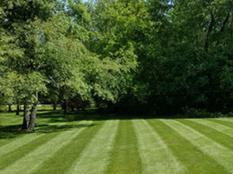 Order Lawn Care in League City, TX, 77573