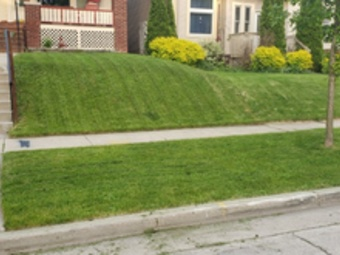 Order Lawn Care in Milwaukee, WI, 53224