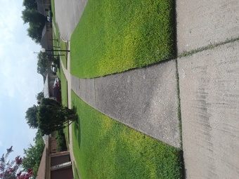 Order Lawn Care in Houston, TX, 77045
