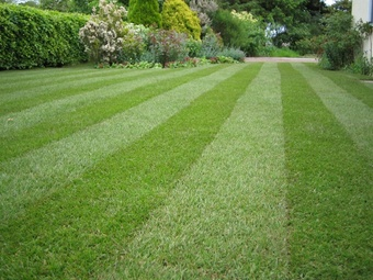 Order Lawn Care in Amelia, OH, 45102