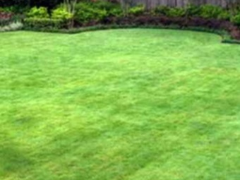Order Lawn Care in Beaverton, OR, 97008
