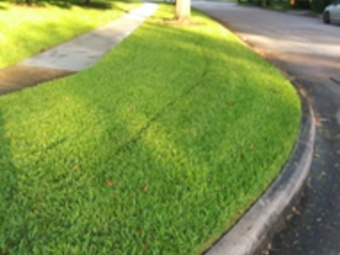 Order Lawn Care in Houston, TX, 77047