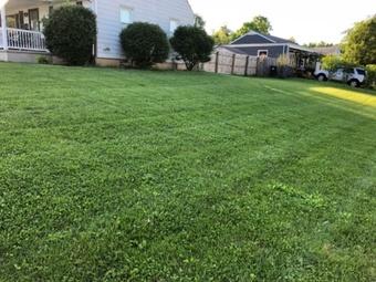 Order Lawn Care in Hamilton, OH, 45013