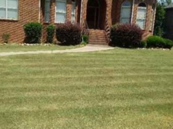 Order Lawn Care in Bessemer, AL, 35020