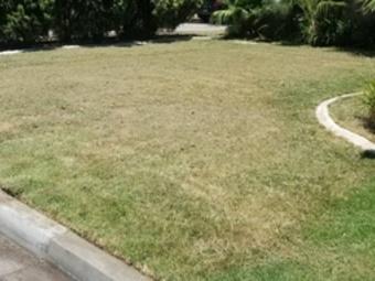 Order Lawn Care in Riverside, CA, 92505
