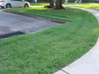 Order Lawn Care in Kissimmee, FL, 34759