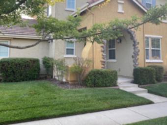 Order Lawn Care in Davis, CA, 95618