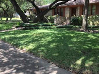 Order Lawn Care in Austin, TX, 78739