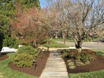 Order Lawn Care in Alexandria, VA, 22308