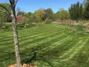 Order Lawn Care in Berkeley Township, NJ, 08721