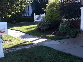 Order Lawn Care in Ecorse, MI, 48229