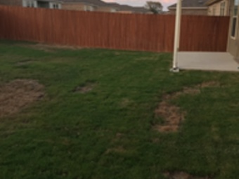 Order Lawn Care in Cedar Park, TX, 78613