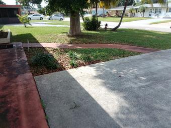 Order Lawn Care in Tamarac, FL, 33319